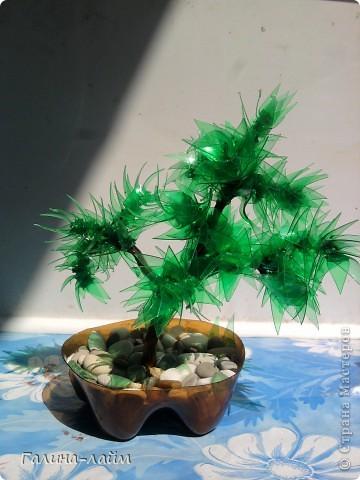 Деревце из пластиковых бутылок фото 2
