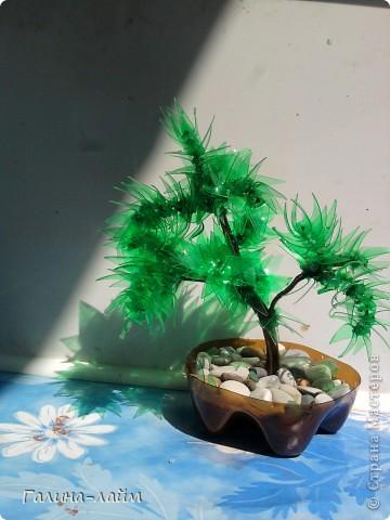 Деревце из пластиковых бутылок фото 3