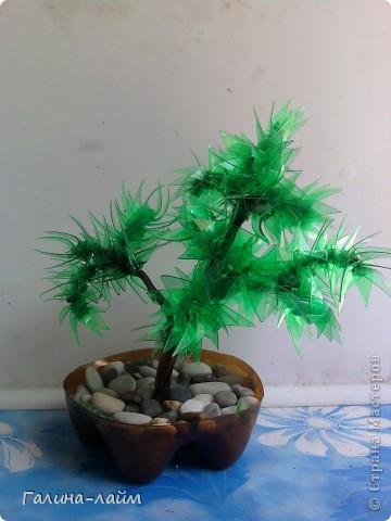 Деревце из пластиковых бутылок фото 1