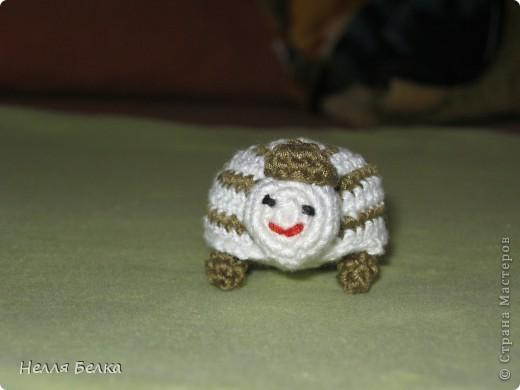 В последнее время у меня началась самая настоящая черепахомания что из этого получилось смотрите сами))) Схемка для вязания была взята здесь http://kru4ok.ru/vyazanaya-cherepashka-amigurumi/#more-261        или еще есть тут http://reutovchanka.ru/post104018547/    спасибо автору за подробную инструкцию.  фото 7