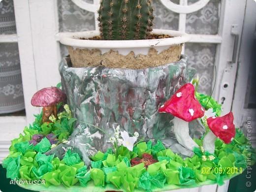 Кто хочет собирать грибочки, приглашаю сюда!!!!! фото 12