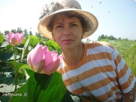 Недалеко от села где я живу, есть озеро Байкал, названное так потому, наверное, что очертаниями похоже на общеизвестное. В июле - авгусе там цветут лотосы. В нашей семье есть традиция - выезжать и любоваться этими волшебными цветами. Предлагаю желающим присоединиться... фото 3