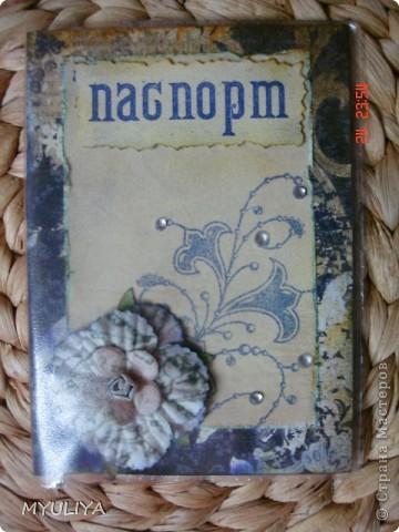 Мои паспорта фото 13