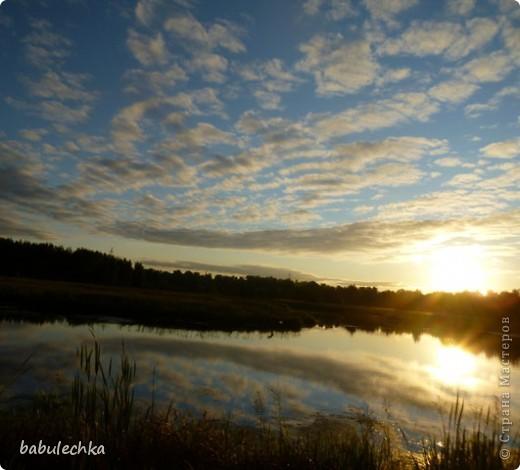 Вечереет.5-е сентября.Иду к реке Уча,давно здесь не была.Тропинка стала такой узкой, шириной в одну ступню. Травы высокие,густые.А это березка,освещенная заходящим солнцем. фото 3