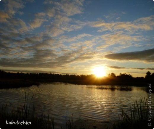 Вечереет.5-е сентября.Иду к реке Уча,давно здесь не была.Тропинка стала такой узкой, шириной в одну ступню. Травы высокие,густые.А это березка,освещенная заходящим солнцем. фото 5