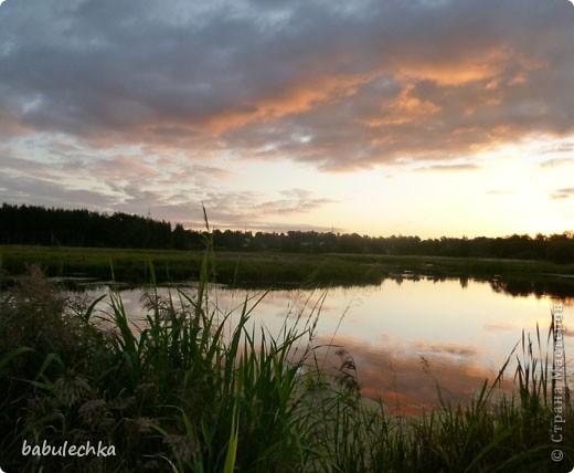 Вечереет.5-е сентября.Иду к реке Уча,давно здесь не была.Тропинка стала такой узкой, шириной в одну ступню. Травы высокие,густые.А это березка,освещенная заходящим солнцем. фото 9