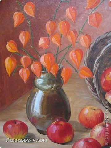 Яблок в этом году в садах очень много. Решила я написать натюрморт.  Разложила красиво яблоки, начала рисовать. Уж больно они сладкие, сочные! Пишу, а так и хочется откусить! Решила сначала одно яблочко съесть, потом второе, так незаметно, почти все и съела. Вкуснотища! Здесь нарисованы яблоки двух сортов: жигулёвское и уэлси. Только закончила картину, сразу отправила на выставку самодеятельных художников в областную картинную галерею.  фото 4
