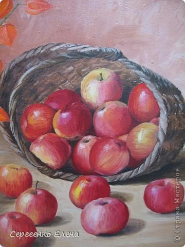 Яблок в этом году в садах очень много. Решила я написать натюрморт.  Разложила красиво яблоки, начала рисовать. Уж больно они сладкие, сочные! Пишу, а так и хочется откусить! Решила сначала одно яблочко съесть, потом второе, так незаметно, почти все и съела. Вкуснотища! Здесь нарисованы яблоки двух сортов: жигулёвское и уэлси. Только закончила картину, сразу отправила на выставку самодеятельных художников в областную картинную галерею.  фото 2