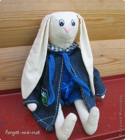 Хто-Хто? Заяц в пальто!))) фото 1