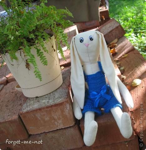 Хто-Хто? Заяц в пальто!))) фото 4