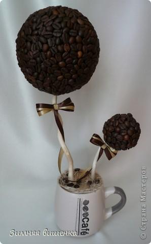 Кофемания....заразная штука. Вначале была куплена кружечка, а потом уже выросло  вот такое деревце. фото 1