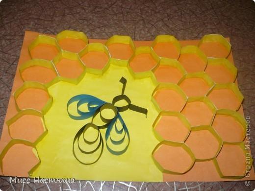 пчелка в сотах повторюшка