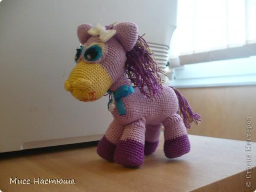 Я маленькая лошадка... фото 1