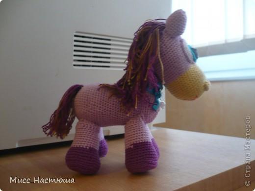 Я маленькая лошадка... фото 2