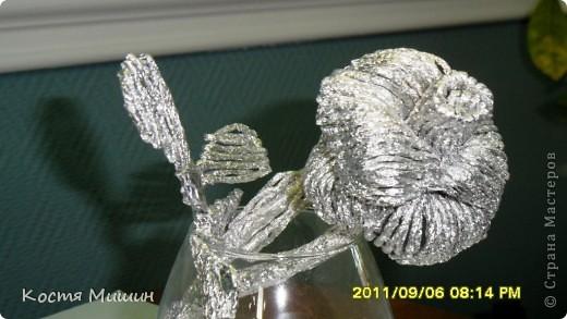 Роза. фото 2