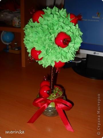 За 2 вечера сделала вот такое гранатовое дерево, гранаты покупала готовые)) фото 3