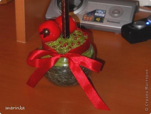 За 2 вечера сделала вот такое гранатовое дерево, гранаты покупала готовые)) фото 4