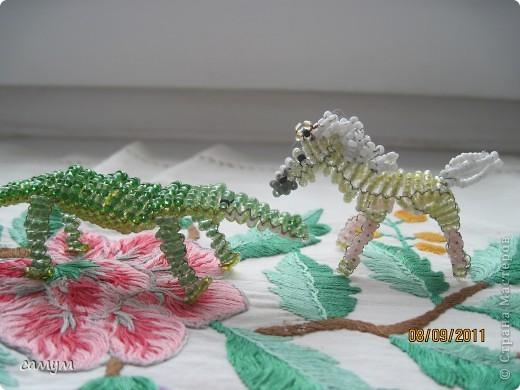 ящерица, змея,божья коровка,гусеница фото 4