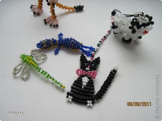 ящерица, змея,божья коровка,гусеница фото 7