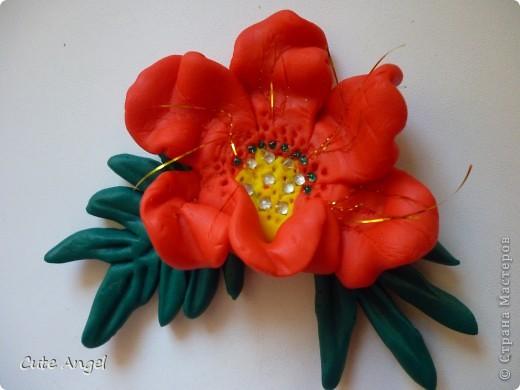 мои первые цветы из пластики фото 2