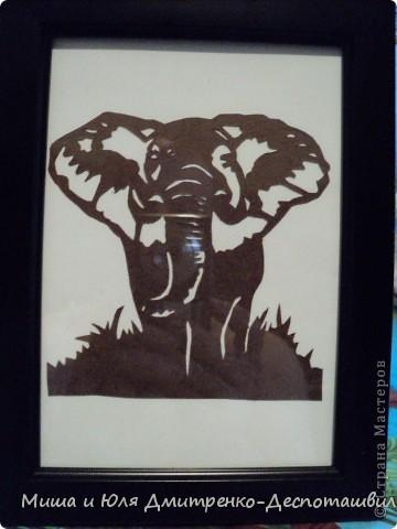 Еще пара вытынанок от моего мужа! Слон. Важный и неторопливый. Идет по джунглям. А за ним (хоть нам и не видно) - слониха и слоненок. И все держатся за хвостики и помахивают ушами в такт неторопливых шагов.  фото 1