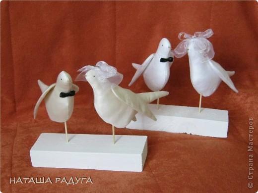 Свадебные голуби фото 1