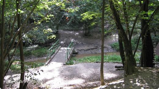 Здравствуйте, жители СМ! Приглашаю всех на прогулку по Бицевскому лесопарку! Вот в таком красивом и зеленом районе на окраине Москвы я и живу! Серез дорогу находится наш микрорайон.Это вход в лес. фото 11