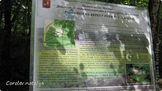 Здравствуйте, жители СМ! Приглашаю всех на прогулку по Бицевскому лесопарку! Вот в таком красивом и зеленом районе на окраине Москвы я и живу! Серез дорогу находится наш микрорайон.Это вход в лес. фото 13