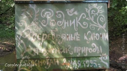 Здравствуйте, жители СМ! Приглашаю всех на прогулку по Бицевскому лесопарку! Вот в таком красивом и зеленом районе на окраине Москвы я и живу! Серез дорогу находится наш микрорайон.Это вход в лес. фото 16