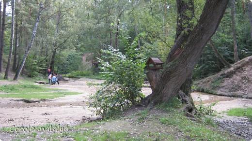 Здравствуйте, жители СМ! Приглашаю всех на прогулку по Бицевскому лесопарку! Вот в таком красивом и зеленом районе на окраине Москвы я и живу! Серез дорогу находится наш микрорайон.Это вход в лес. фото 22