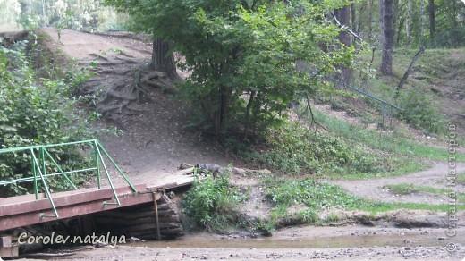 Здравствуйте, жители СМ! Приглашаю всех на прогулку по Бицевскому лесопарку! Вот в таком красивом и зеленом районе на окраине Москвы я и живу! Серез дорогу находится наш микрорайон.Это вход в лес. фото 24