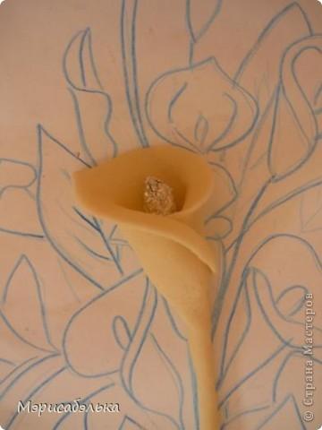 Привет всем заглянувшим ко мне в гости!!!Вот такие каллы я подарила на день рождения своей любимой сестренке!!!                                                                                                                                                                                          Процесс изготовления цветов фоткала и хочу показать вам как я их делала.Это мой первый МК,надеюсь,что кому-нибудь пригодится))) фото 22