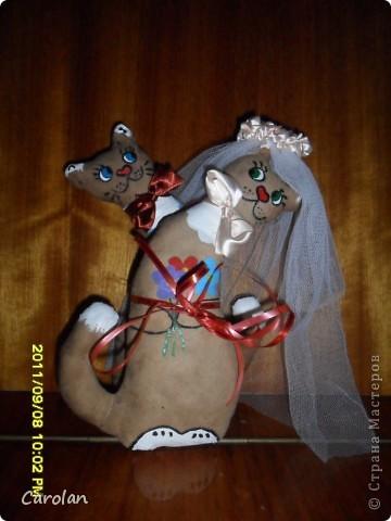 Коты в подарок на свадьбу подруге