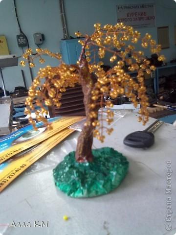 вот мое мини деревце фото 4
