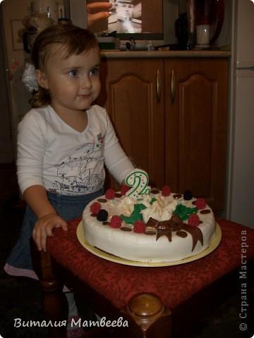 Всем доброго времени суток! Сегодня моей принцессе исполнилось ровно 2 годика! Вот какой тортик у меня получился! фото 5