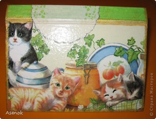 Ни для кого не секрет, что я обожаю кошек :) Поэтому выбирая мотивы для шкатулочки-купюрницы я естественно выбрала кошек :) Шкатулка сделана из старой не нужной книги. Идею давно уже увидела в инете, но руки только сейчас дошли... и вот что вышло ;) Верх. фото 1