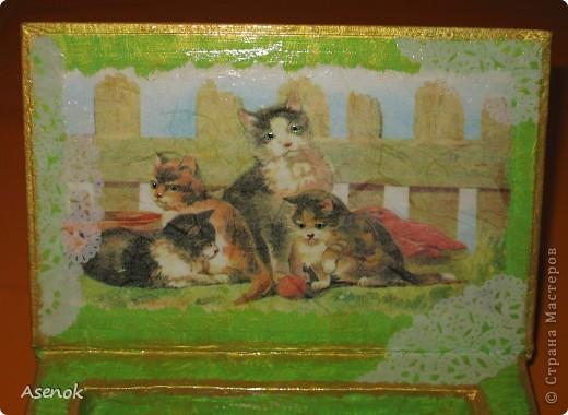 Ни для кого не секрет, что я обожаю кошек :) Поэтому выбирая мотивы для шкатулочки-купюрницы я естественно выбрала кошек :) Шкатулка сделана из старой не нужной книги. Идею давно уже увидела в инете, но руки только сейчас дошли... и вот что вышло ;) Верх. фото 2