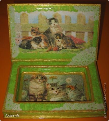 Ни для кого не секрет, что я обожаю кошек :) Поэтому выбирая мотивы для шкатулочки-купюрницы я естественно выбрала кошек :) Шкатулка сделана из старой не нужной книги. Идею давно уже увидела в инете, но руки только сейчас дошли... и вот что вышло ;) Верх. фото 3