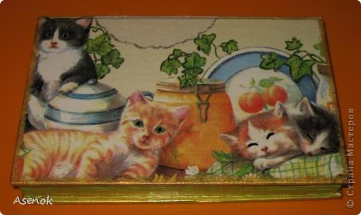 Ни для кого не секрет, что я обожаю кошек :) Поэтому выбирая мотивы для шкатулочки-купюрницы я естественно выбрала кошек :) Шкатулка сделана из старой не нужной книги. Идею давно уже увидела в инете, но руки только сейчас дошли... и вот что вышло ;) Верх. фото 5