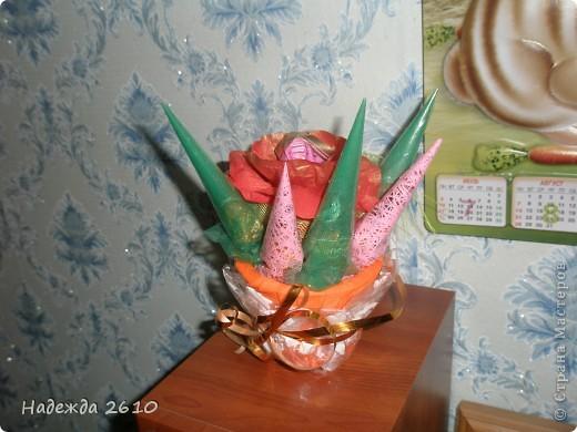 Сладкая роза фото 2