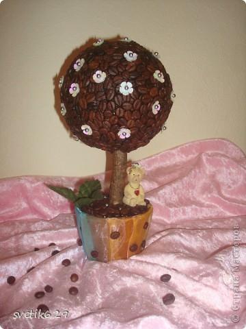 Это мое первое дерево из кофе)))) фото 1