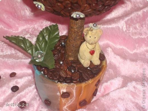 Это мое первое дерево из кофе)))) фото 3