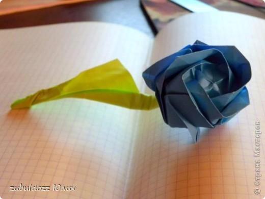 Роза Кавасаки (решила тоже научиться их делать) фото 1