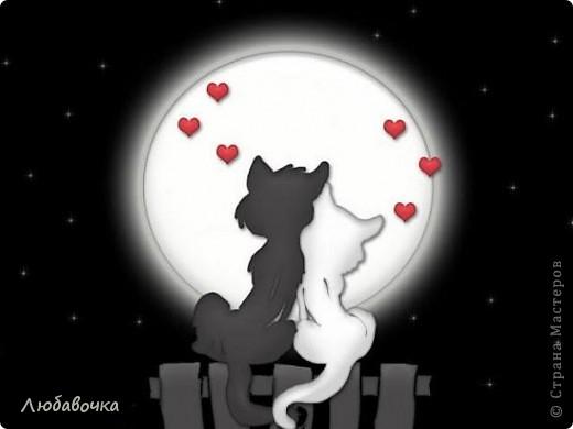 Влюблённые кошаки)) фото 6