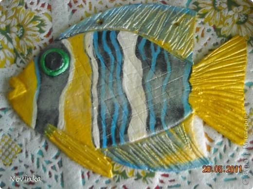 Экзотическая рыбка фото 1