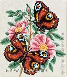 Шиповник и бабочки.Квиллинг. фото 8