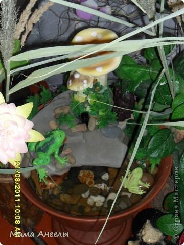 Комнатный фонтан фото 1