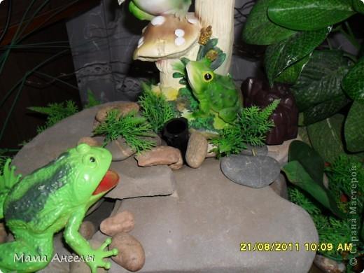 Комнатный фонтан фото 4