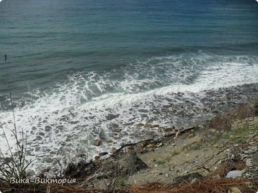 Выбрались мы на выходных к морю, отдохнуть, захватили фотоаппарат, и как оказалось - не зря, природа у нас на Кубани очень красивая. Вот мне и захотелось поделиться с вами, жители нашей Страны, всей этой красотой..... фото 3