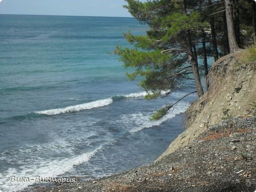 Выбрались мы на выходных к морю, отдохнуть, захватили фотоаппарат, и как оказалось - не зря, природа у нас на Кубани очень красивая. Вот мне и захотелось поделиться с вами, жители нашей Страны, всей этой красотой..... фото 1